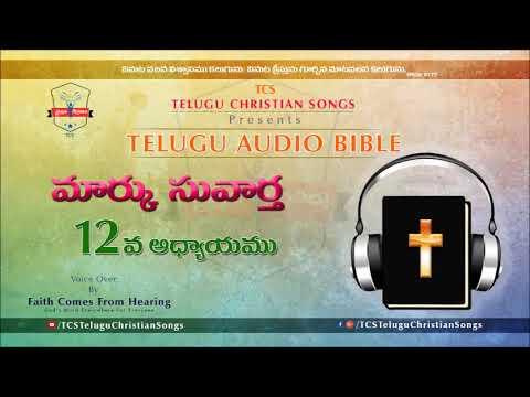 Gospel of Mark (మార్కు సువార్త) Chapter 12 || Telugu Audio Bible ||