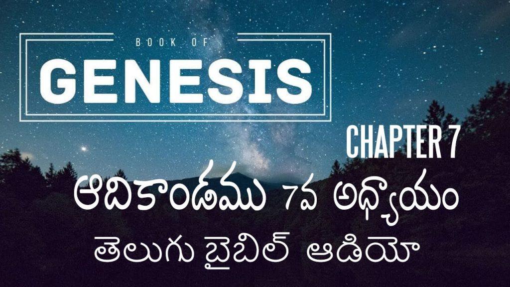 ఆదికాండము 7వ అధ్యాయం / Genesis Chapter 7 in Telugu / Telugu Audio Bible/ holy bible audio in telugu
