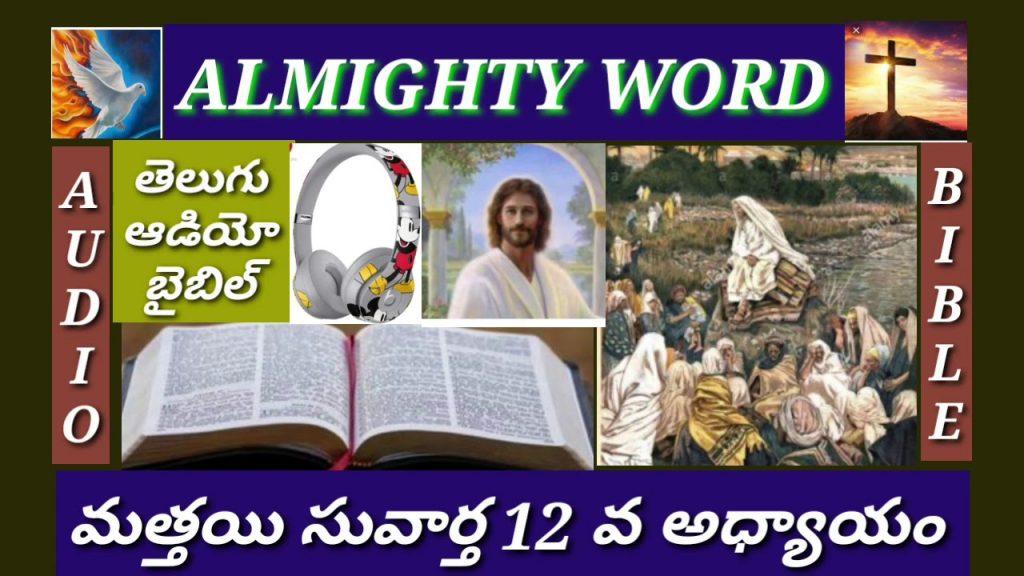 మత్తయి సువార్త 12 వ అధ్యాయం (తెలుగుఆడియో బైబిల్)MATTHEW  CHAPTER 12