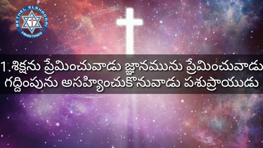 సామెతలు 12, proverbs 12, telugu audio bible,