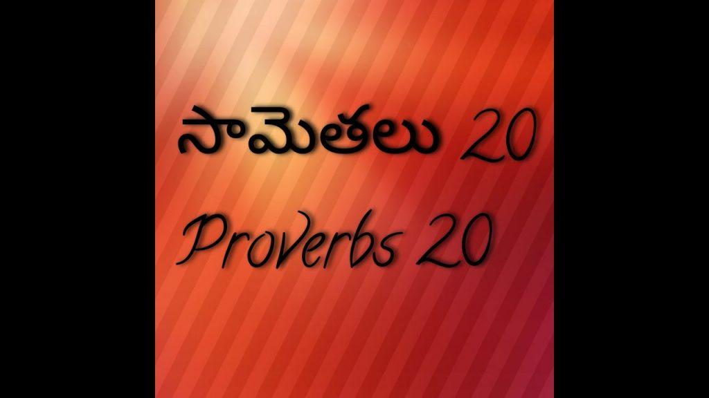 సామెతలు   20వ అధ్యయం తెలుగులో/proverbs 20 in Telugu/Telugu Bible audio by smiley/Daily Devotion