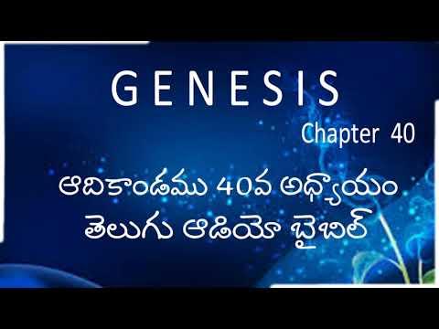Adikandamu 40Va Adhyayam / Genesis Chapter 40 / Telugu Audio Bible / holy bible audio in telugu