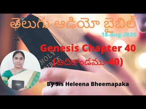 Genesis Chapter 40(ఆదికాండము-40)||Telugu Audio Bible||