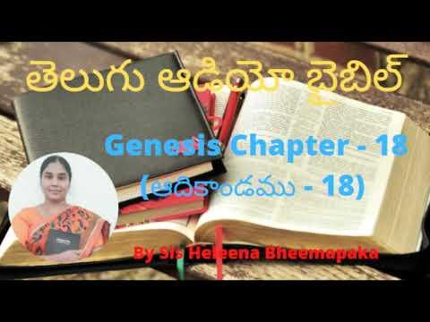 Genesis chapter 18(ఆదికాండము - 18)||Telugu Audio Bible||