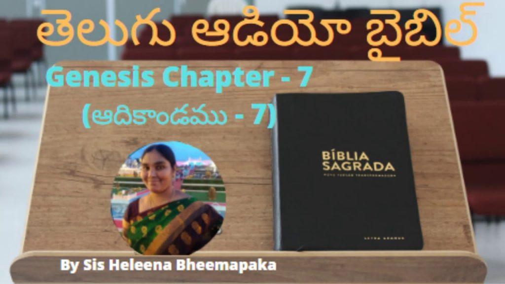 Genesis chapter 7(ఆదికాండము - 7)||Telugu Audio Bible||