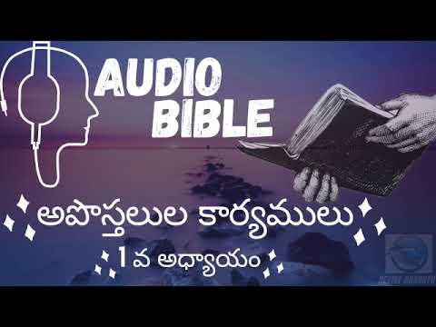 Telugu Audio bible Acts 1. అపొస్తలుల కార్యములు 1 వ అధ్యాయం.