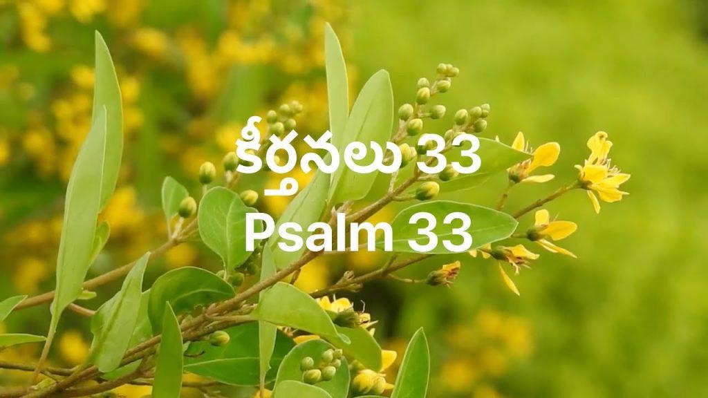 Telugu Bible    Audio   Psalm 33   పరిశుద్ధ గ్రంథము   కీర్తనలు 33   Sravanthi Samson   Sunil Solomon