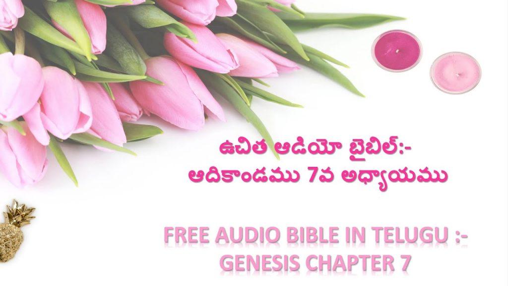 ఆదికాండము 7వ అధ్యాయం తెలుగులో, GENESIS Chapter 7. BIBLE in Telugu