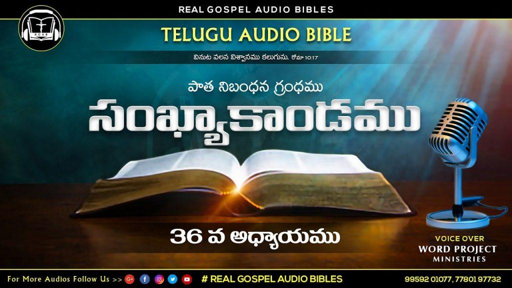 సంఖ్యాకాండము 36వ అధ్యాయము || పాతనిబంధన గ్రంధము || TELUGU AUDIO BIBLE || REAL GOSPEL AUDIO BIBLES ||
