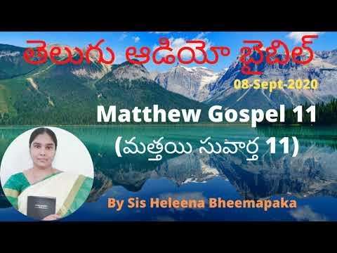 Matthew Gospel 11(మత్తయి సువార్త 11)||Telugu Audio Bible||