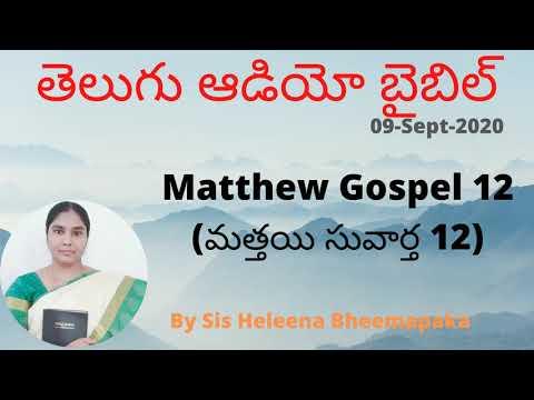 Matthew Gospel 12(మత్తయి సువార్త 12)  Telugu Audio Bible  