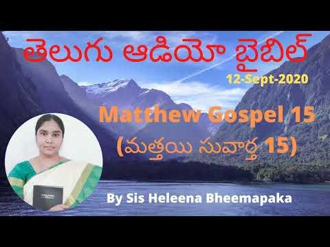 Matthew Gospel 15(మత్తయి సువార్త 15)||Telugu Audio Bible||