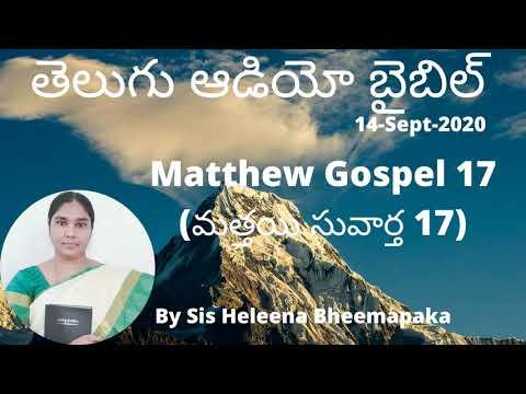 Matthew Gospel 17(మత్తయి సువార్త 17)||Telugu Audio Bible||