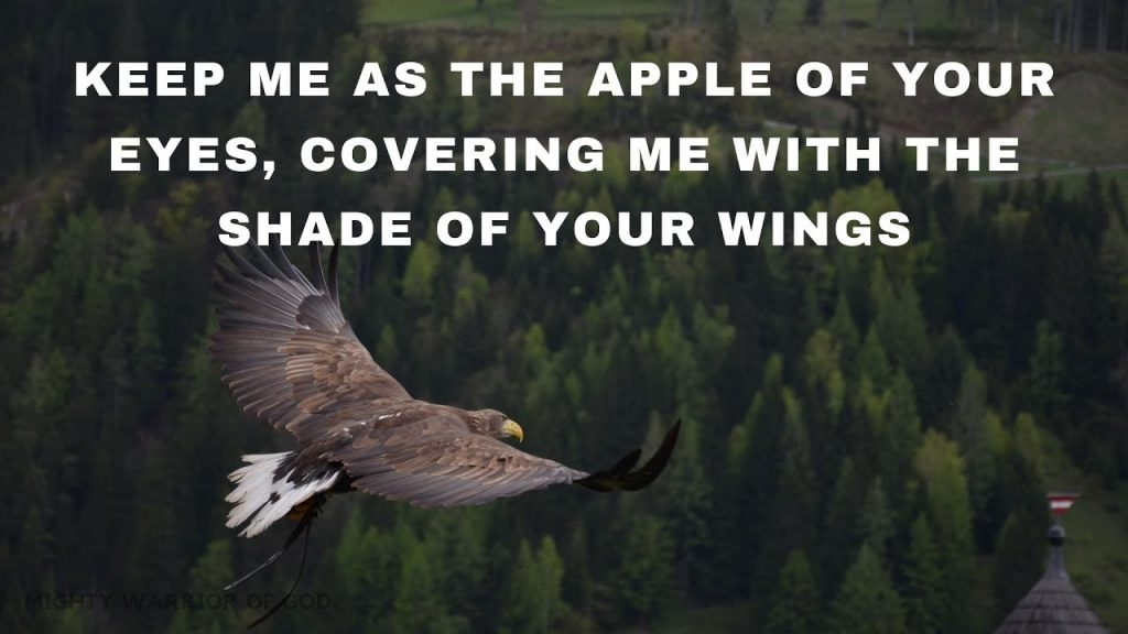 PSALMS 17 | TODAY'S SCRIPTURE | COVER ME UNDER YOUR WINGS, O LORD | ENGLISH AUDIO BIBLE