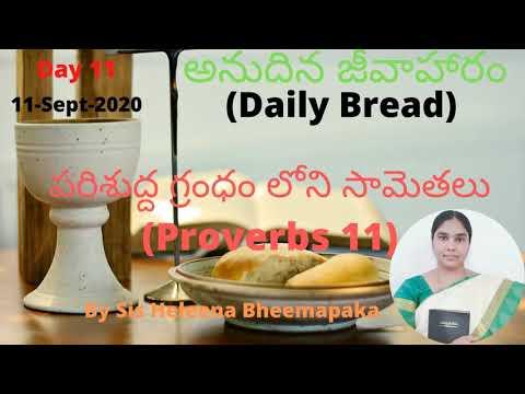 Proverbs Chapter 11(సామెతలు-11)||Telugu Audio Bible||