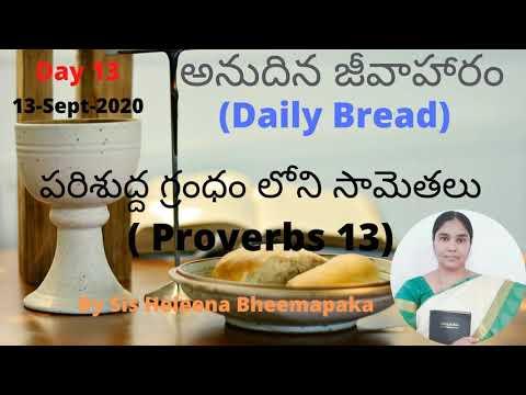 Proverbs Chapter 13(సామెతలు-13)||Telugu Audio Bible||