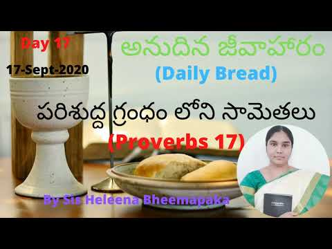Proverbs Chapter 17(సామెతలు-17)||Telugu Audio Bible||