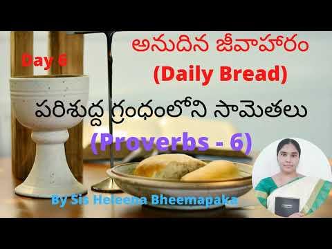 Proverbs Chapter 6(సామెతలు-6)||Telugu Audio Bible||