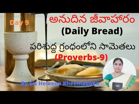 Proverbs Chapter 9(సామెతలు-9)||Telugu Audio Bible||