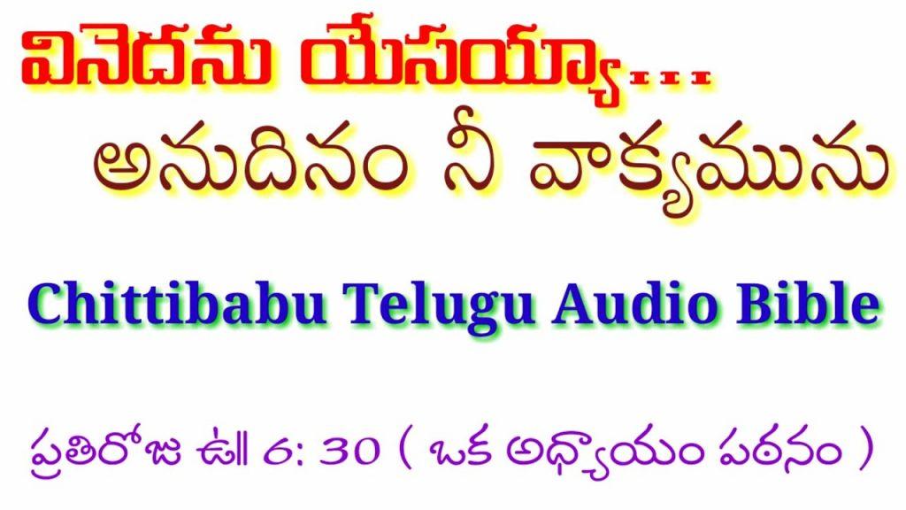 Telugu Audio Bible,కీర్తనలు:100,వినెదను యేసయ్యా అనుదినం నీ వాక్యమును,తెలుగు ఆడియో బైబిల్B.Chittibabu