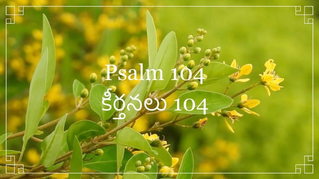 Telugu Bible |  Audio | Psalm 104 | పరిశుద్ధ గ్రంథము | కీర్తనలు 104 | Sravanthi  | Sunil Solomon